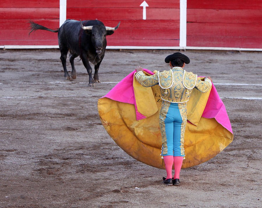 Bullfighting is barbaric